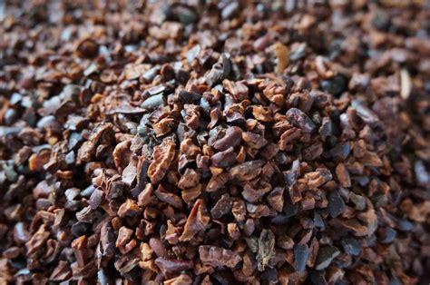 cocoa nibs organic cacao nibs tilin cacao find your origin