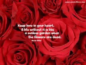 your beautiful quotes quotesgram