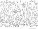 Coloring Pages Ocean Sea Waves Under Adults Deep Adult Template Colouring Printable Sheets Garden Mural Printables Version Popular Pdf Coloringhome sketch template