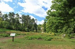 File:Peony Garden Nichols Arboretum University of Michigan ...
