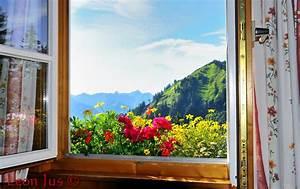 Blick Aus Dem Fenster Poster : blick aus dem fenster bilder ~ Sanjose-hotels-ca.com Haus und Dekorationen