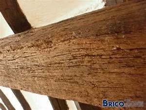 Peindre Des Poutres Anciennes : restaurer de vieilles poutres en bois ~ Premium-room.com Idées de Décoration
