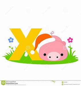 9 best images of alphabet letter y animals animals with for Animal alphabet letter x