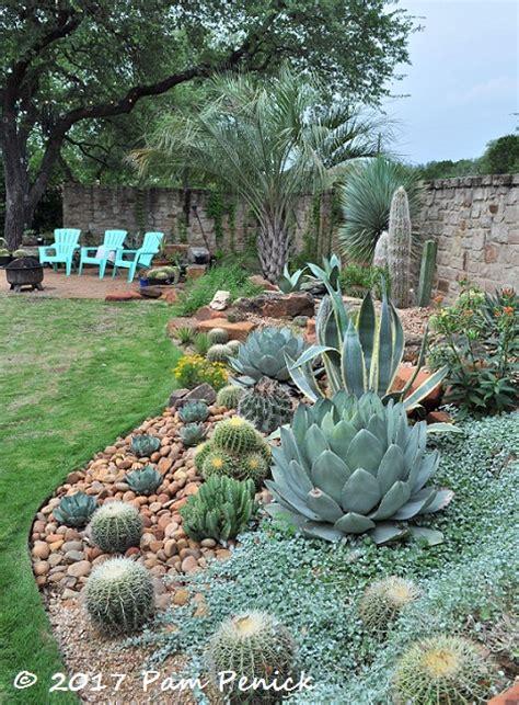 agave  cactus splendor   garden  matt shreves