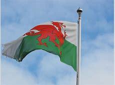 Welsh_Flag Digital Leaders