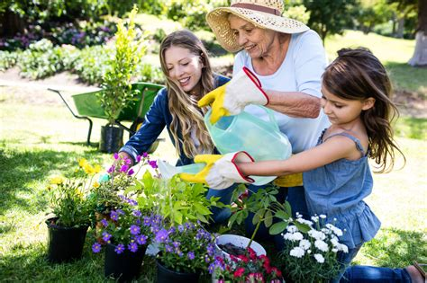 mendham garden center new jersey garden supply gardening tips advice