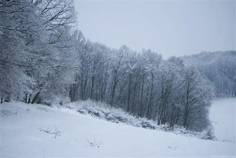 landscaping in winter winter landscape