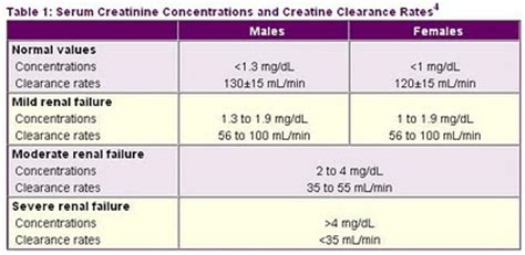 creatinine the free encyclopedia rachael edwards