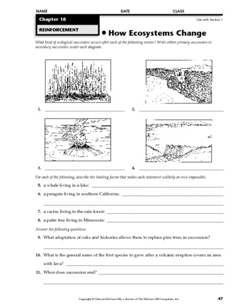 ecosystems change worksheet    grade