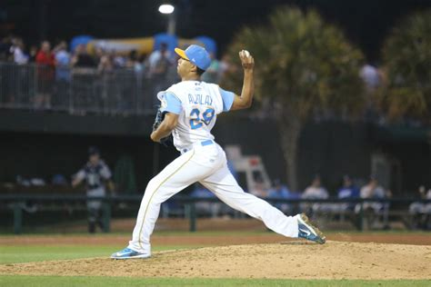 Cubs Minor League Year In Review