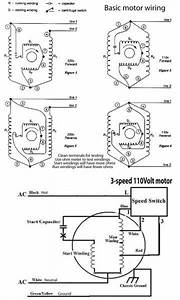 Hunter 3 Speed Fan Switch Wiring Diagram  With Images