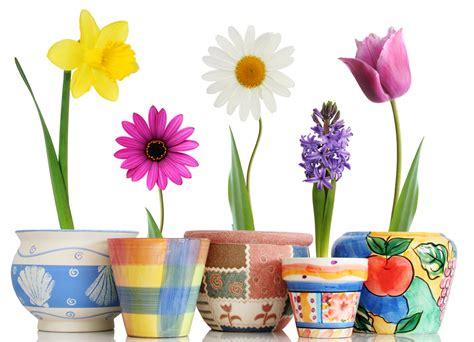 stickers pots de fleur pas cher