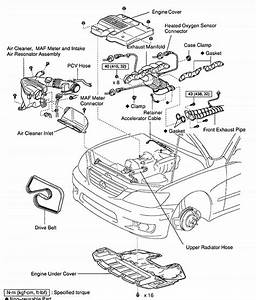 Lexus Rx330 Parts Diagram
