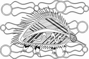 Indigenous Colouring In Book Download Braveant