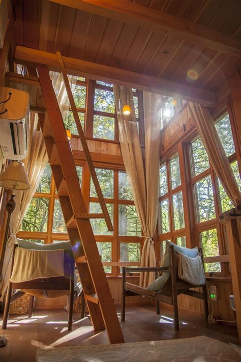 treehouse tree point inside nelson adults pete seattle branches playhouses local fall trillium