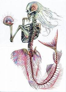 mermaid skeleton on Tumblr
