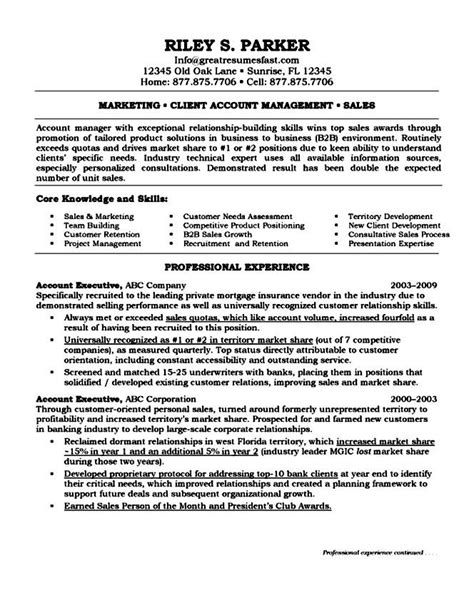top executive resume sles free sles exles