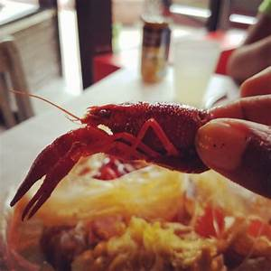 Crawfish love - Yelp