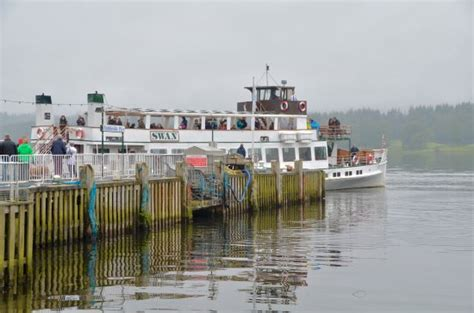 Swan Boats Closed by Swan Boat Cruise To Hotel Picture Of Waterhead