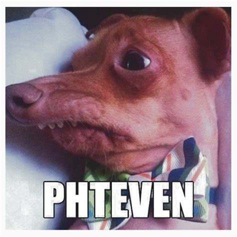 Phteven Dog Meme - phteven gifts merchandise redbubble
