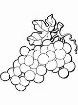 Coloring Grapes Pages Grape Vine Leaves California Fruits Mission Printable Drawing Raisins Colouring Getcolorings Recommended Clipartmag sketch template