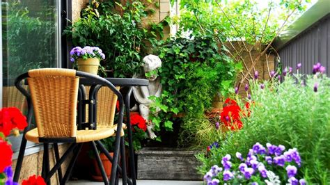 Small Garden Designs How To Design A Yourself Funky Ideas