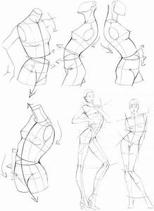 The Upper Body - Figure Drawing