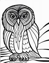 Coloring Owl Printable sketch template