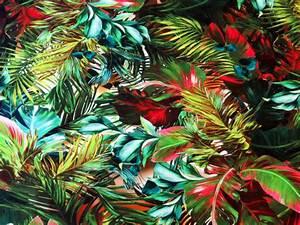 Tissu Imprimé Tropical : tissu jersey viscose elasthanne imprim tropical the sweet mercerie ~ Teatrodelosmanantiales.com Idées de Décoration