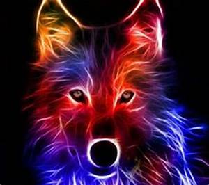 1000 images about Amazing wolfs on Pinterest
