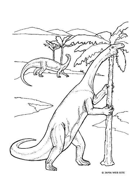 disegni da colorare on line gratis dinosauri http www bambinievacanze 2013 09 dinosauri da