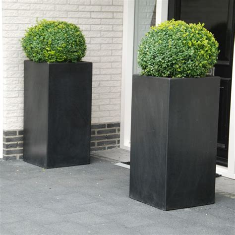 Square Outdoor Planters by Lightweight Fibreglass Garden Planter Buxus High Cube