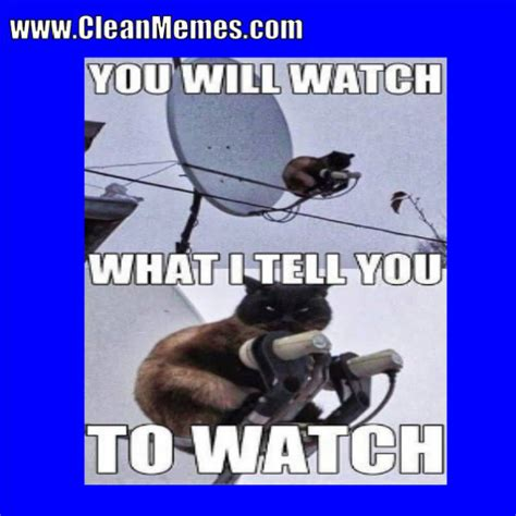 Funny Clean Memes - clean memes 02 21 2018 clean memes the best the most online