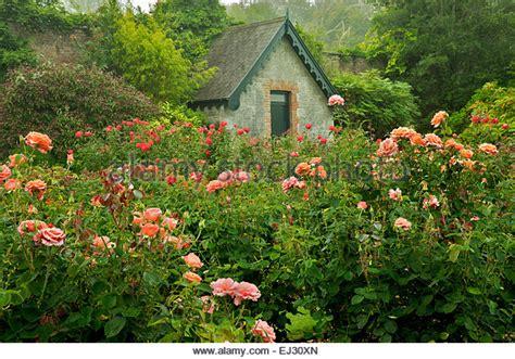 Cottage Garden Stock Photos & Cottage Garden Stock Images