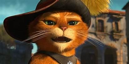 Puss Boots Cat Wallpapers Minds Shrek Meme