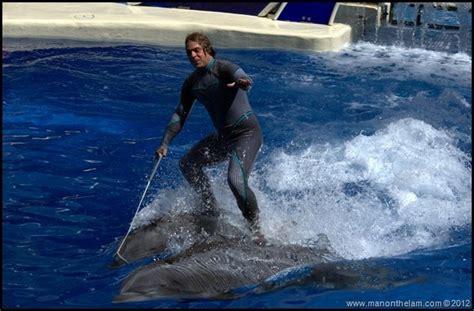 Trainer Riding Dolphins -- Seaworld Orlando Florida
