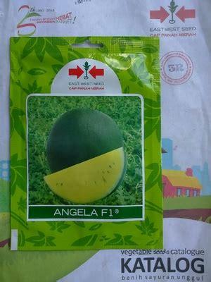 benih semangka kuning angela f1 dadi makmur