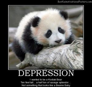 panda bear quotes  sayings quotesgram