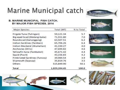 municipal fisheries