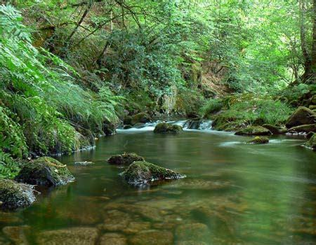 Fin a la contaminación de cuerpos de agua | Agua para ...