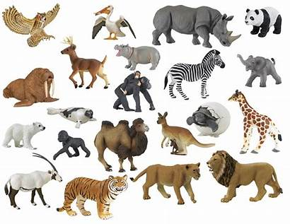 Zoo Animals Animal Assorted Childcraft Toys Colors