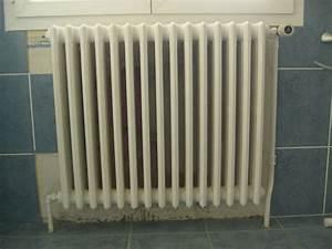 Purger Un Radiateur En Fonte : d montage radiateur fonte ~ Premium-room.com Idées de Décoration