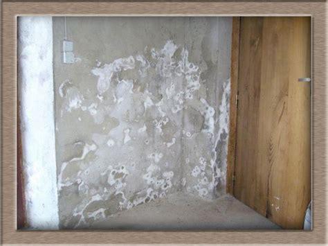 psoques cuisine humidit dans maison 7 conseils pour identifier les causes dans la maison traitement humidit