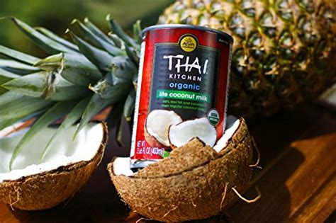 thai kitchen organic coconut milk thai kitchen organic lite coconut milk 13 66 oz pack of 8446