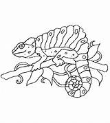 Chameleon Coloring Animals Printable Momjunction Animal Printables Curious George Exclusive sketch template