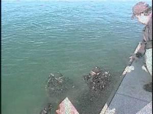 Niagara County Sheriff Underwater Recovery Team - YouTube