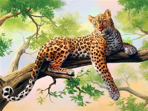 leopard art wide screen  wallpaperscom
