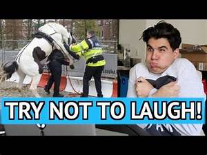 TRY NOT TO LAUGH CHALLENGE! 3 (REALLY HARD) - YouTube