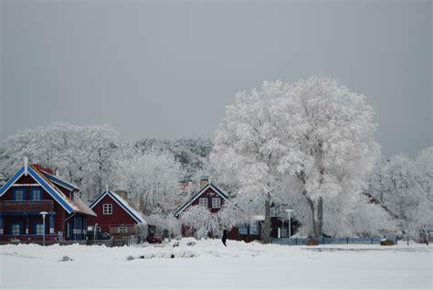 file nida in winter jpg