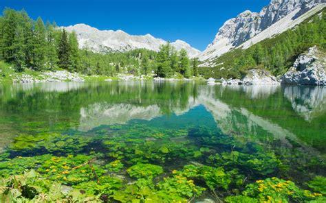 Lake And Mountain View Slovenia : Wallpapers13.com